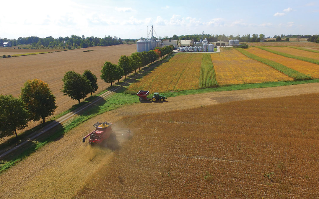 Western Ontario farmland sale price hits $32,000 per acre